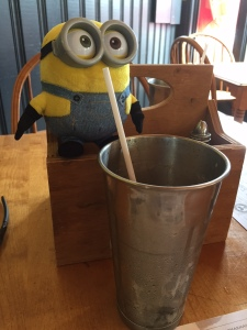 Seeing a lot more than just riders coming up. Whether is is a mini Elvis, a Squirrel, Sock, Beaver, Teddy Bear, and now a Minion! Fred says our Trip Mascot, Bob has been photobombing all over the place!